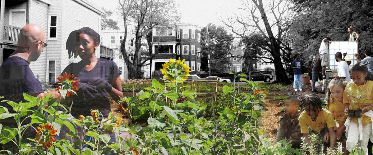 mattapan garden_banner_1200-500