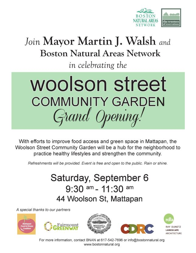 Woolson St Grand Opening